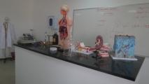 <h5>المختبرات العلمية</h5>